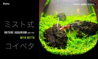 "<span class=""title"">【水槽立ち上げ】草原水槽(ミスト式)withベタ</span>"
